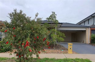Picture of 24 Scotchmer Crescent, Mernda VIC 3754