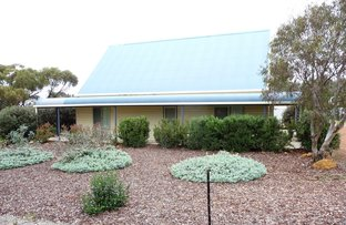 Picture of 3 Little Street, York WA 6302