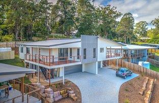 Picture of 1/8 Macaranga Place, Palmwoods QLD 4555