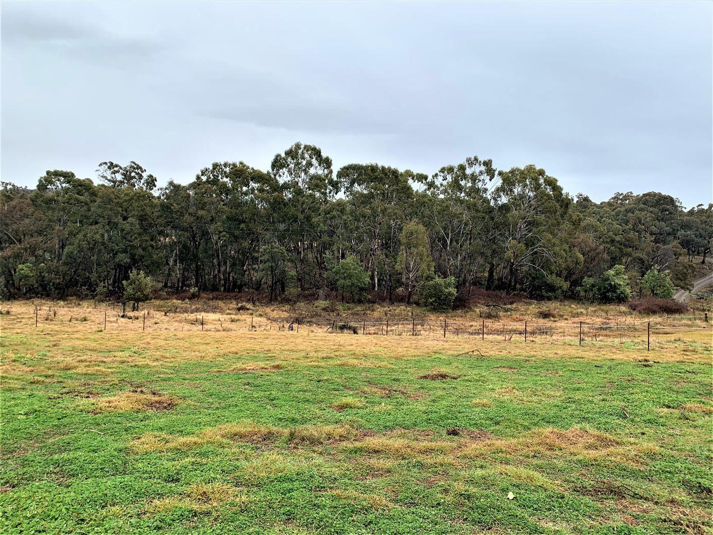 81 lindsay street ,Hargraves 2850, Mudgee NSW 2850, Image 2