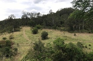 Picture of 424 Paddock Creek Road, Caffreys Flat via, Wingham NSW 2429