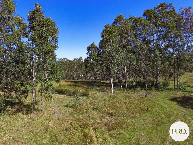 Paddys Flat Road, Tabulam NSW 2469, Image 2