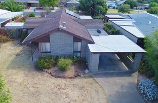Picture of 42 Maiden Street, Moama NSW 2731