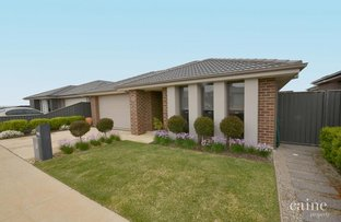 Picture of 16 Gitsham Street, Lucas VIC 3350