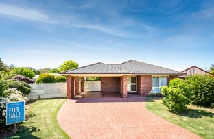 Picture of 13 Mundoona Court, Mooroopna VIC 3629