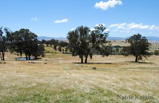 Picture of Lot 17 Rifle Butts Rd, Mansfield VIC 3722
