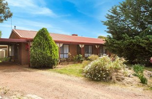 Picture of 52 Olympic Pde, Kangaroo Flat VIC 3555