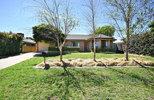 Picture of 38 Websdale Drive, Dubbo NSW 2830