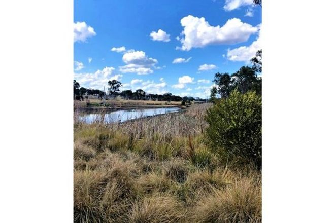 Picture of Lot 1 New England Highway, GLEN APLIN QLD 4381