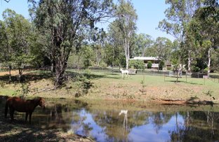 Picture of Wattle Camp QLD 4615