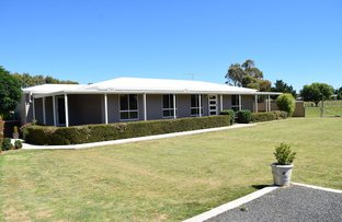 Picture of 32-38 Stevenson, Guyra NSW 2365
