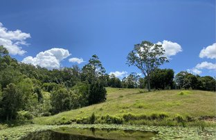 Picture of Conondale QLD 4552