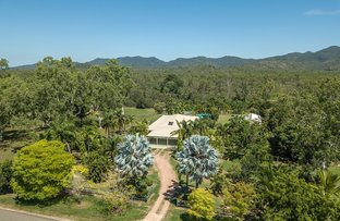 Picture of 440 Forestry Road, Bluewater Park QLD 4818