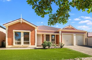 Picture of 16 Larkdale  Avenue, Marion SA 5043