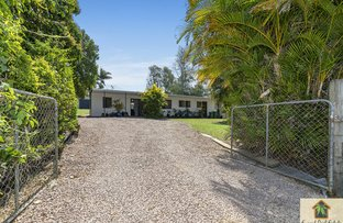 Picture of 14 Bray Road, Mooloolah Valley QLD 4553