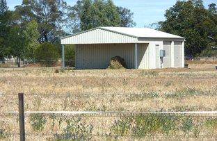 Picture of 19 Holland Close, Gilgandra NSW 2827