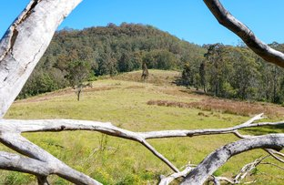 Picture of Lot 6 Blue Bonnet Road, Lambs Valley NSW 2335