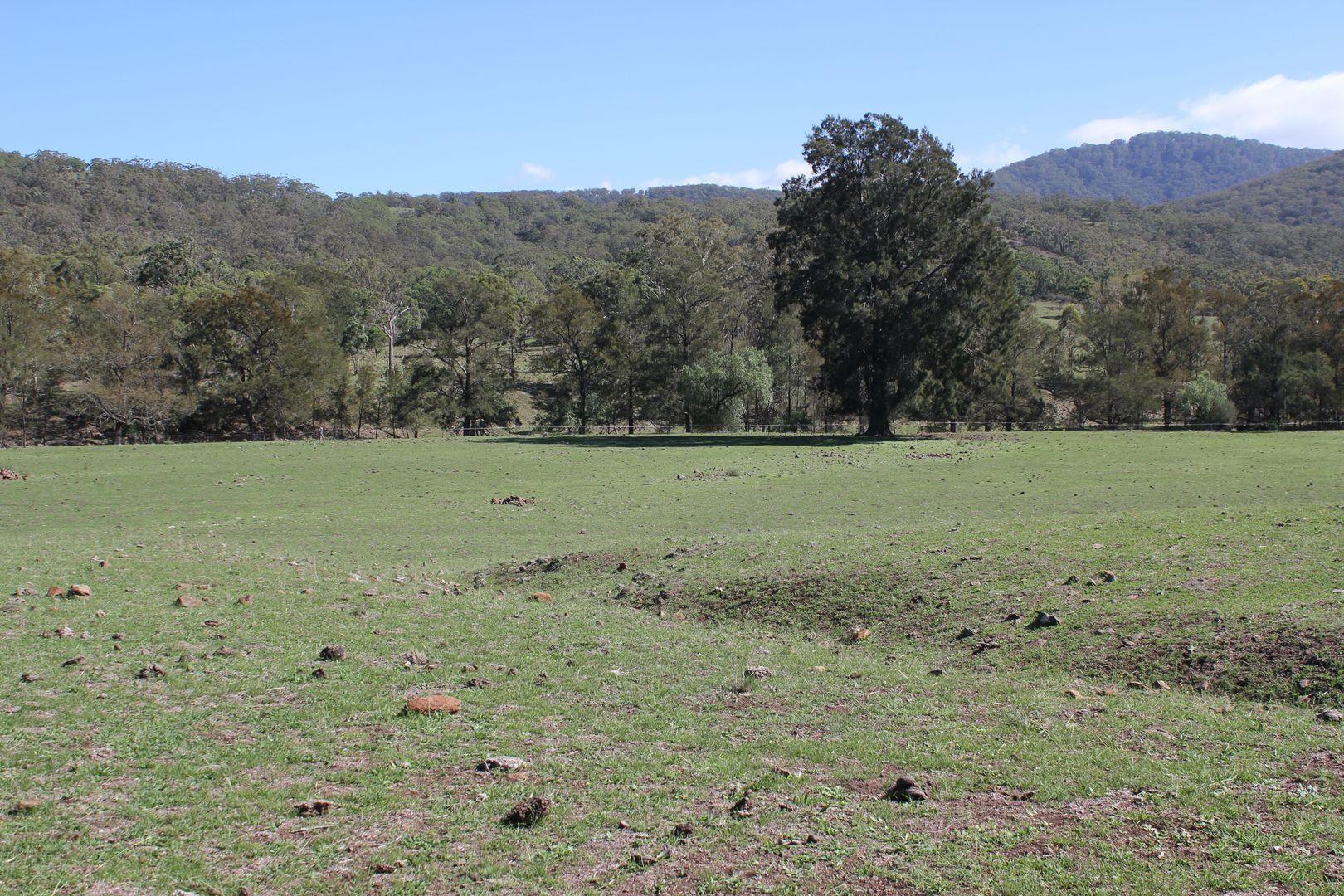 Lot 13 Roma Road, Merriwa NSW 2329, Image 2