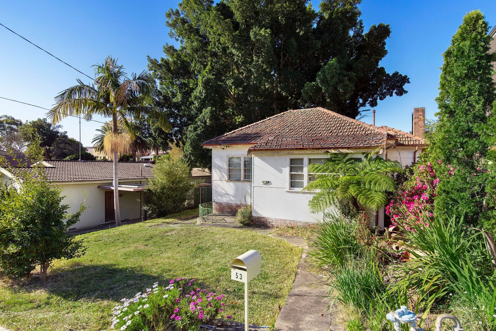 53 Morrison Road, Gladesville NSW 2111, Image 0
