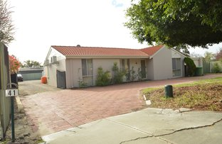 Picture of 41 Morley Drive East, Morley WA 6062