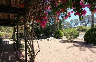 Picture of 77 Greenly Avenue, Coffin Bay SA 5607