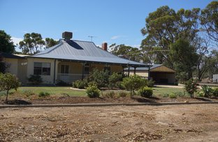 Picture of 211 Riley Road, Moora WA 6510