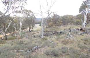 Picture of Lot 1 Nimmo Road, Eucumbene NSW 2628