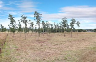 Picture of Lot 4 & 5 Red Hill Road, Wilsons Plains QLD 4307