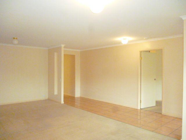 11 Oscar Court, Buderim QLD 4556, Image 1
