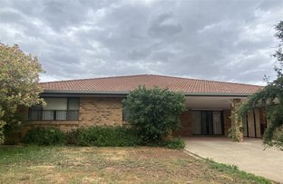 Picture of 135 Stock Road, Gunnedah NSW 2380