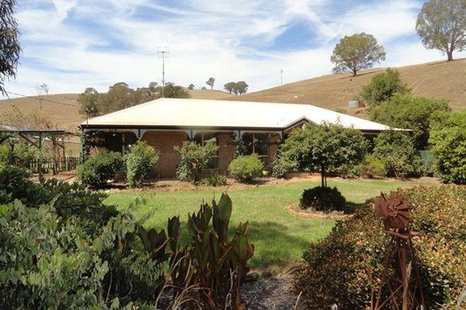 Picture of 3176 River Road, JINGELLIC NSW 2642