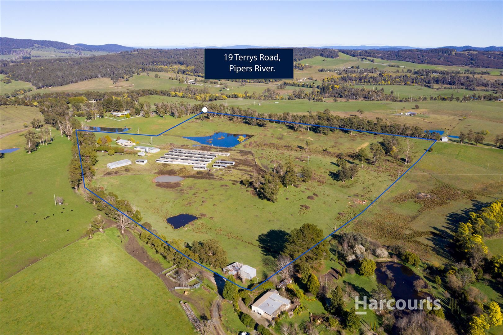 19 Terrys Road, Pipers River TAS 7252, Image 1