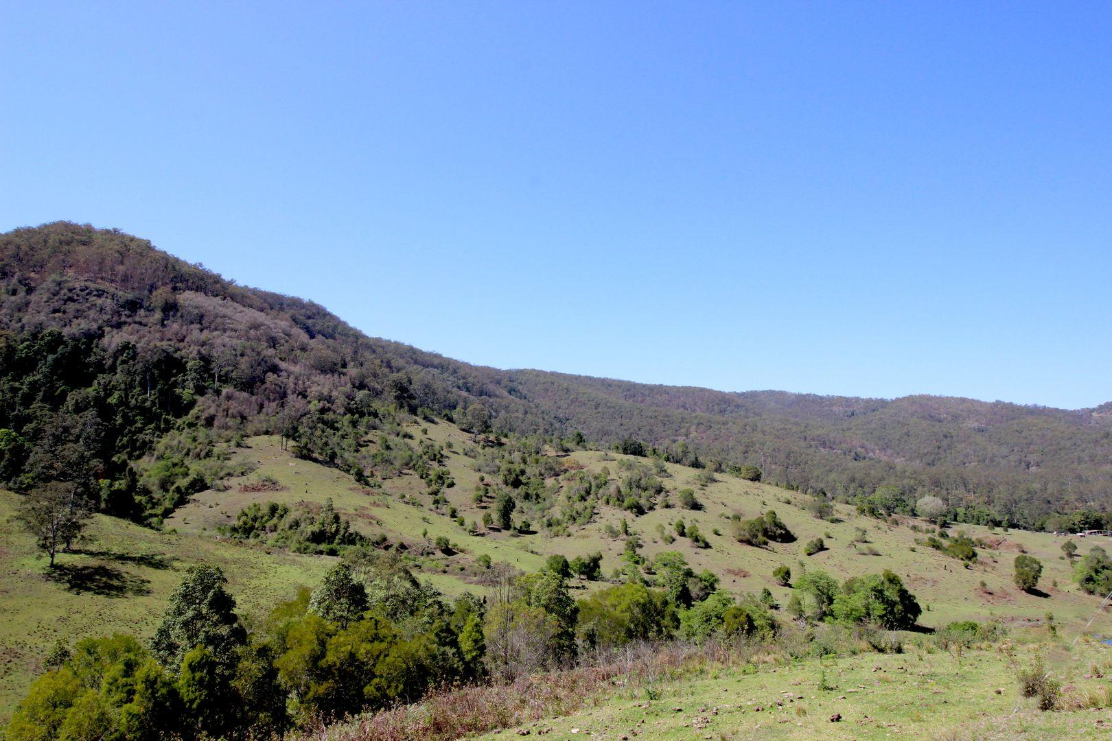 154 Inlet Road, Birdwood NSW 2446, Image 2