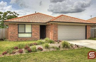 Picture of 8 Kristy Court, Raceview QLD 4305