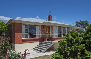 Picture of 14 Talune St, Youngtown TAS 7249