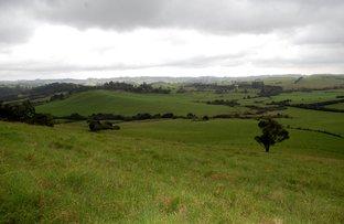 Picture of 501 Maynards Plains Rd, Dorrigo NSW 2453