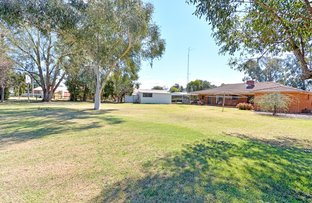 Picture of 11 Tecoma Street, Leeton NSW 2705