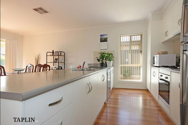 Picture of 3 Gonis  Circuit, EVANSTON GARDENS SA 5116