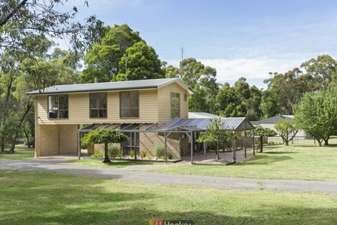 Picture of 1550 Colac-Forrest Road, YEODENE VIC 3249