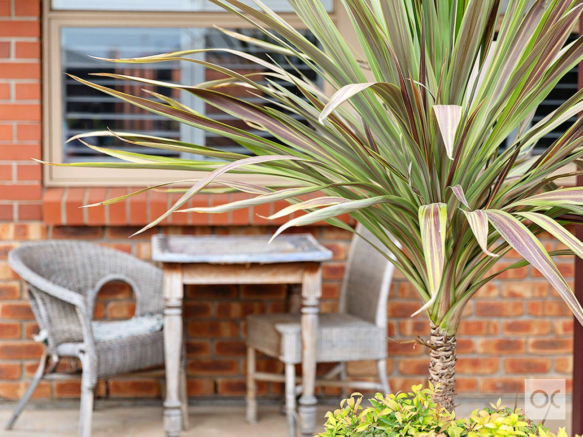 6/30 Swan Terrace, Ethelton SA 5015, Image 2