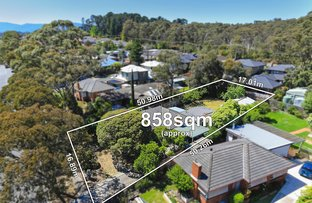 39 Clarence Road, Wantirna VIC 3152
