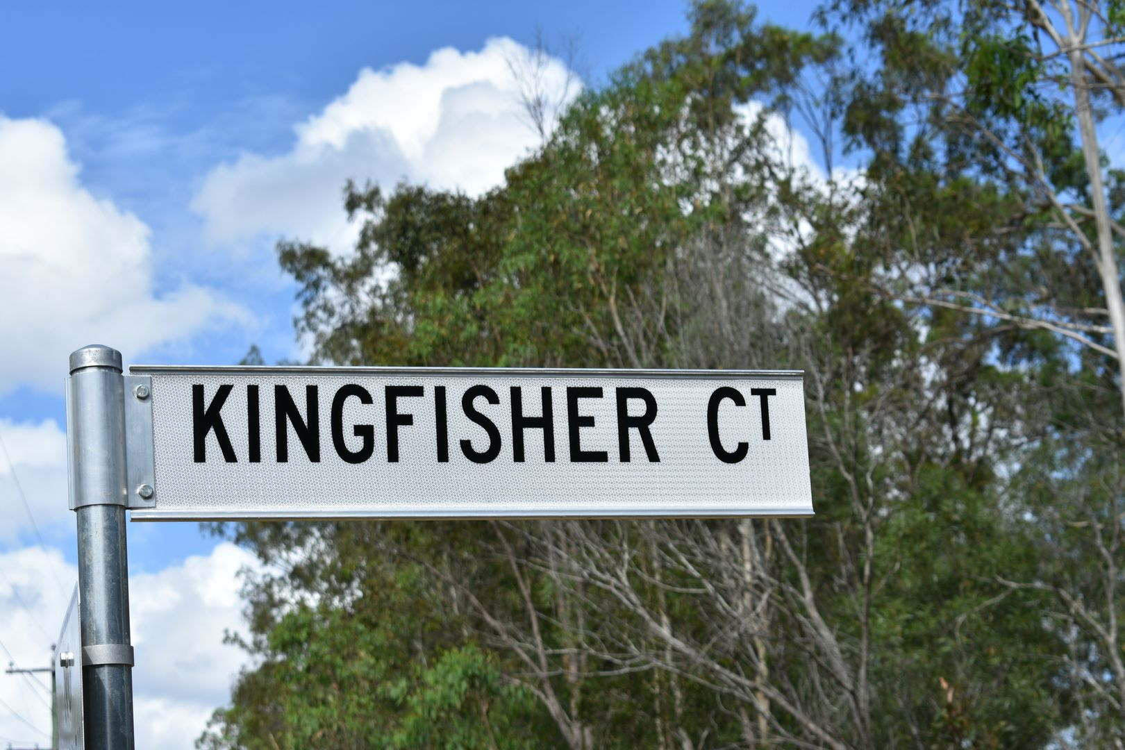 Lot 8 Kingfisher Ct, Tinana QLD 4650, Image 2