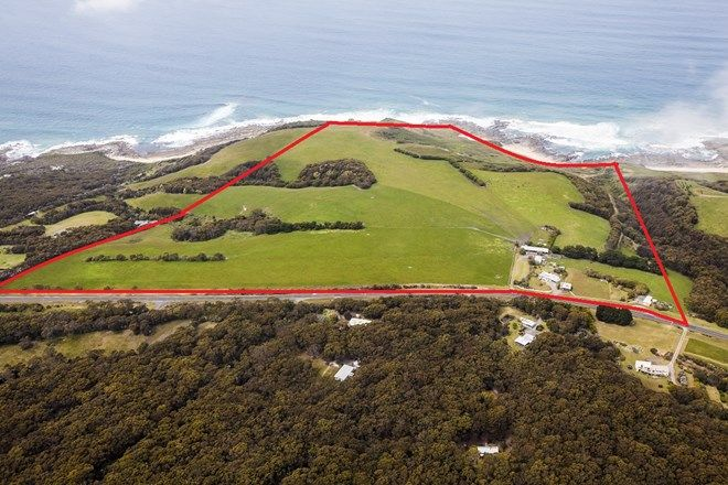 Picture of 455 Great Ocean Road, APOLLO BAY VIC 3233