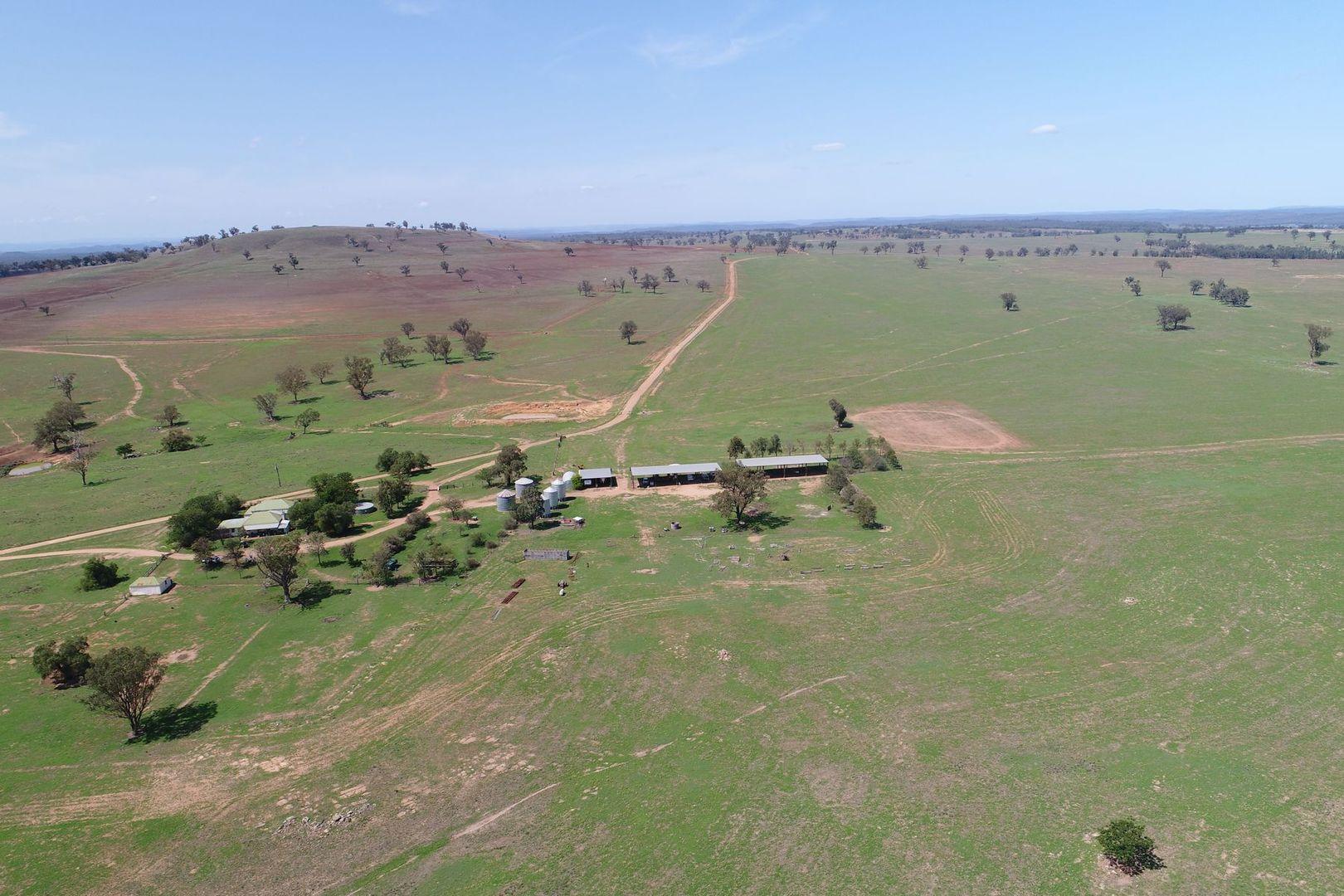 'Summerhill' Mixed Farming Enterprise, Cassilis NSW 2329, Image 2