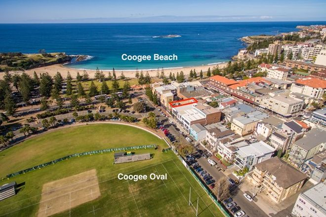 Picture of 2/33 Alfreda Street, COOGEE NSW 2034