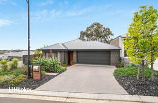 Picture of 22 Filsell Terrace, Gawler South SA 5118