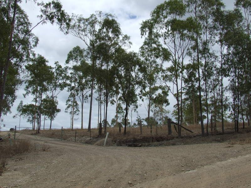 Thiels Rd, Dalysford QLD 4671, Image 1