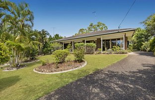 Picture of 15 River Road, Tewantin QLD 4565