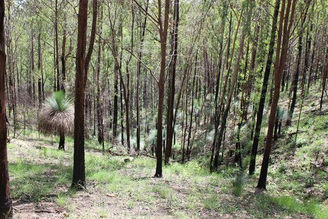 Picture of 1222 Bulldog Road, BULLDOG NSW 2469