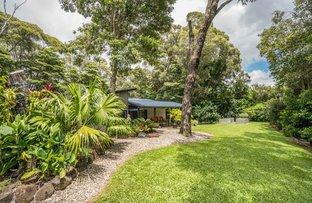 Picture of 10 Fallon Road, Kuranda QLD 4881